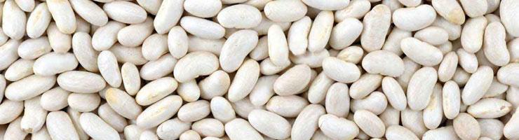 Белая фасоль при похудении